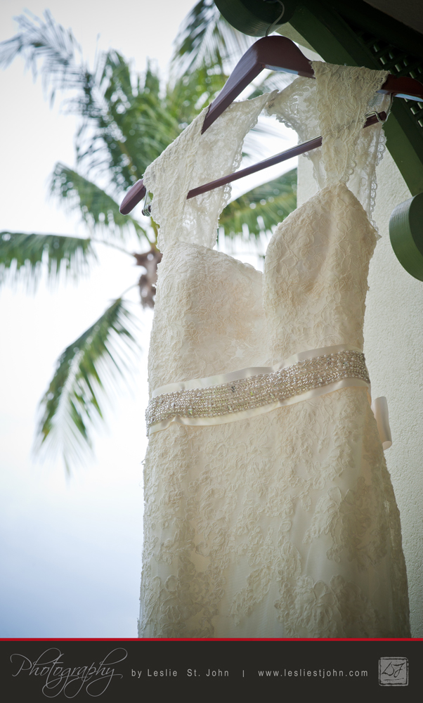 The Dress And The Coconut Tree